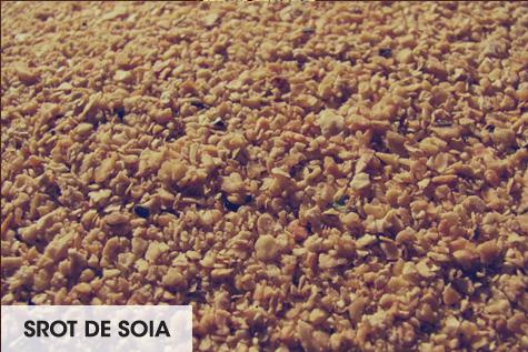 srot de soia
