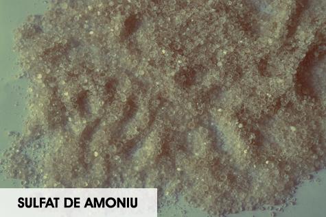sulfat-de-amoniu
